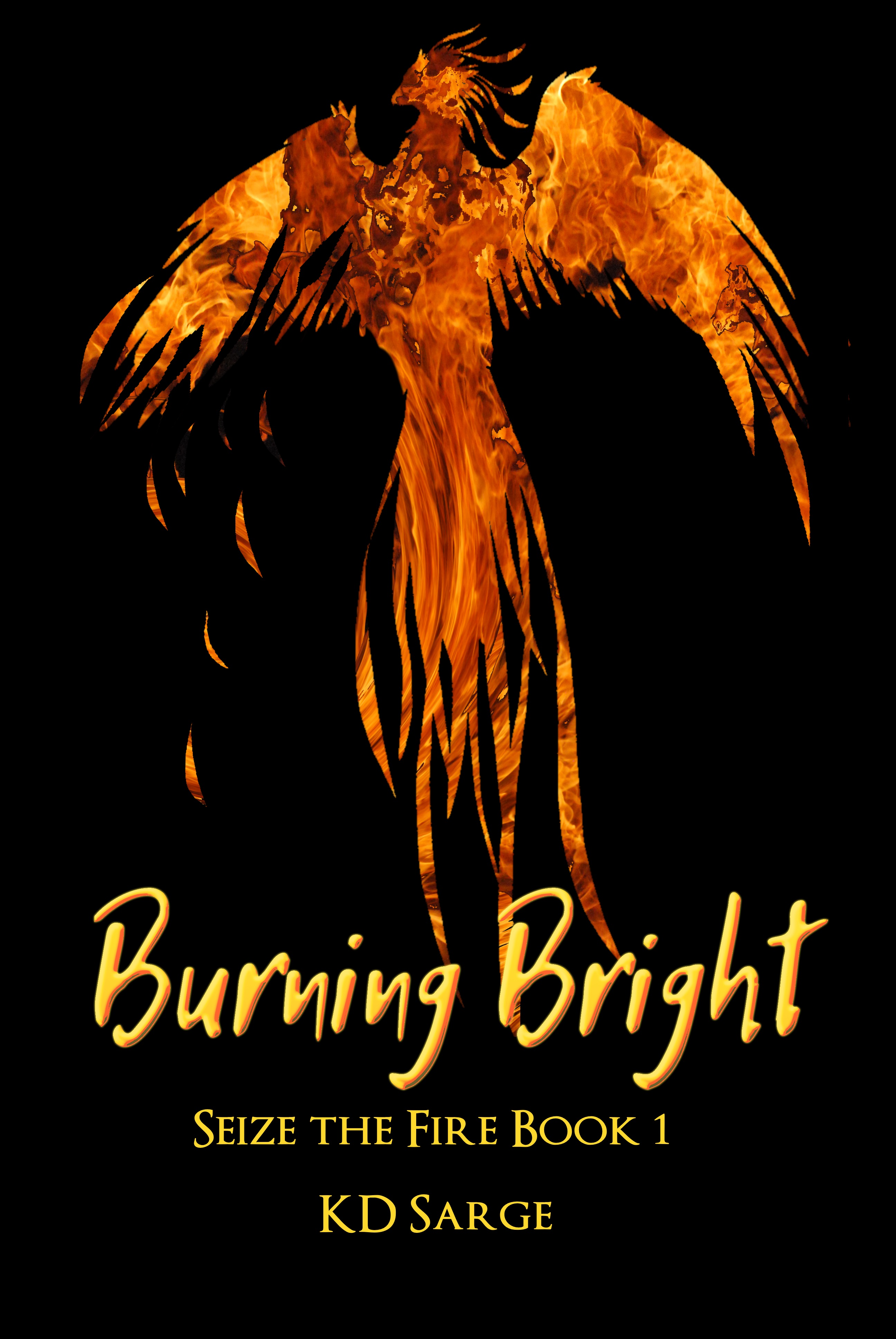 Burning Bright cover, a flaming phoenix on a black background