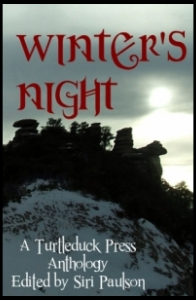 Winter's night ebook cover