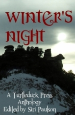Book cover of Winter's Night anthology, showing a cold winter sun over rocks and snow